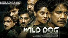 wild dog movie nnline